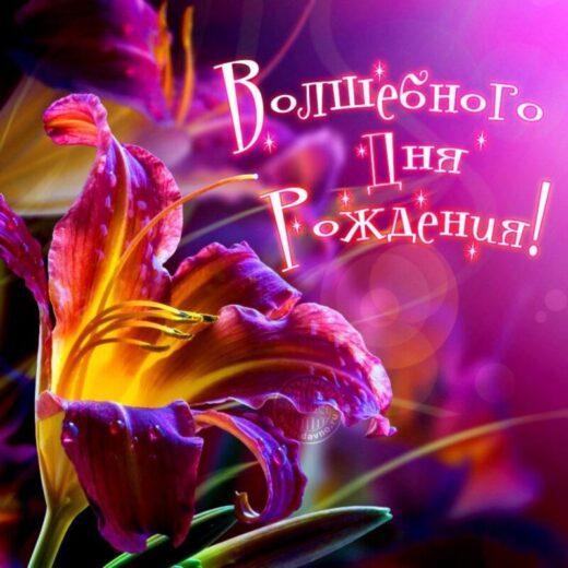 С Днём Рождения, Ольга Валерьевна!